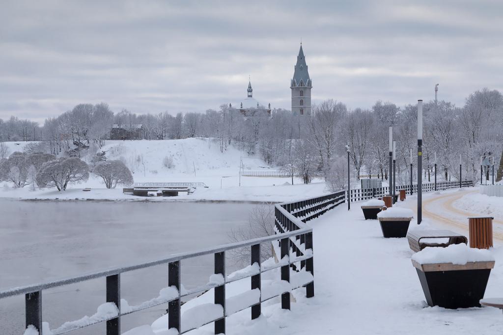 елгава зимние фото туристов корзинке букетом